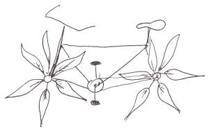 Перьевой велосипед