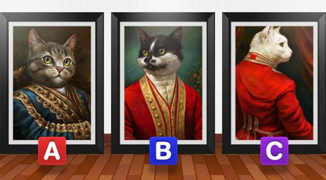 Выбранный котик расскажет какая вы мягкая, спокойная или харизматическая лидер