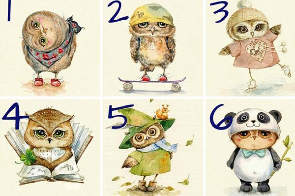 Насколько вы умны или мудры, расскажет выбранная вами сова