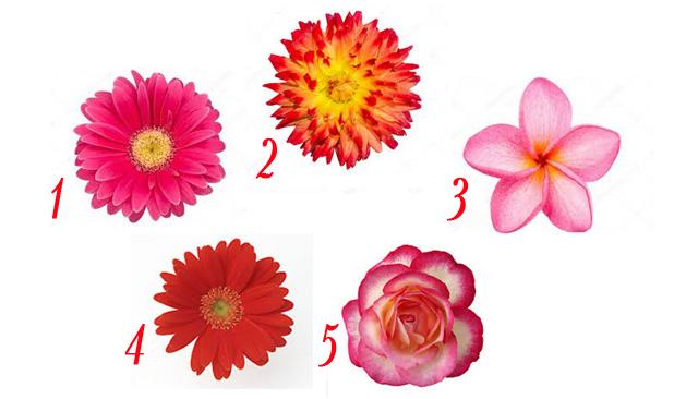 Выбранный Ангельский цветочек, откроет тайну за 7 печатями вашего характера