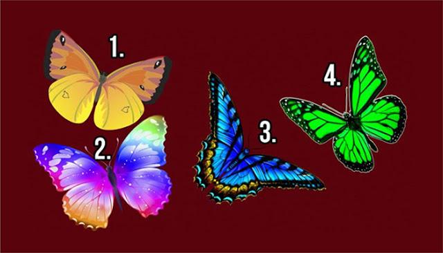 Нажмите на самую красивую бабочку, которая вам приглянулась и узнайте тайны своей души