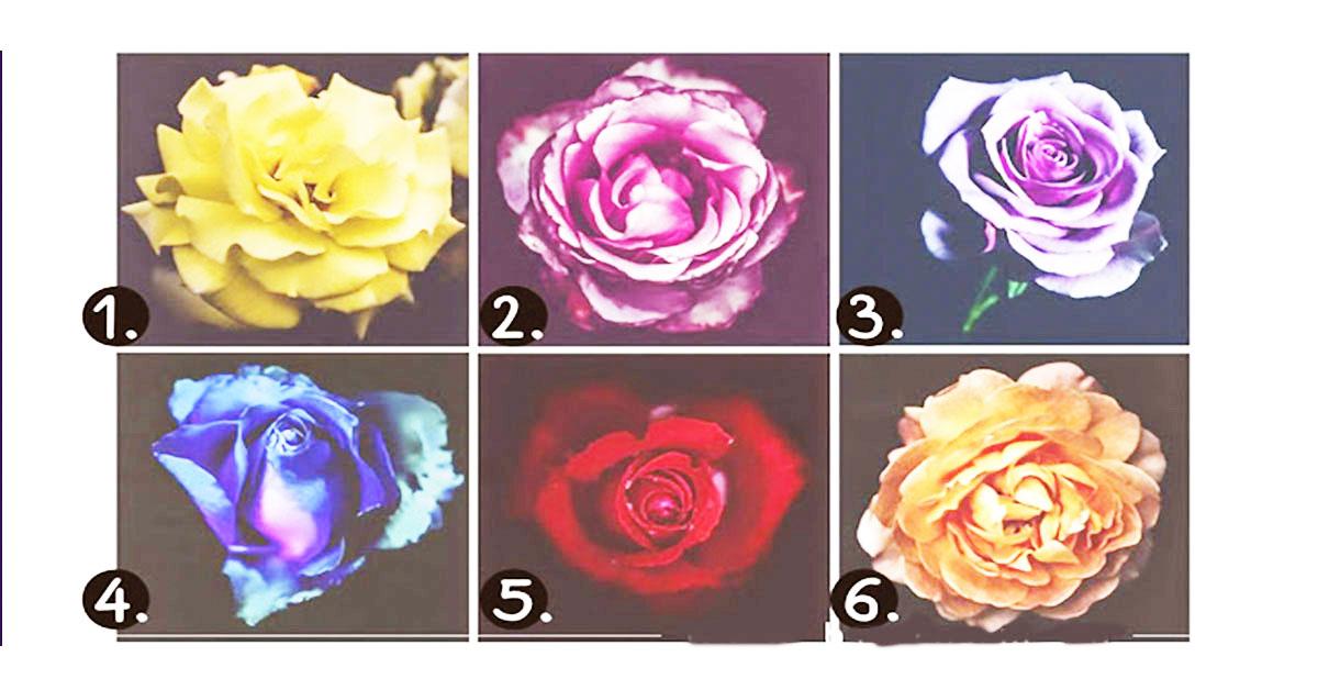Уникальный тест души! Какая роза самая красивая для Вас?