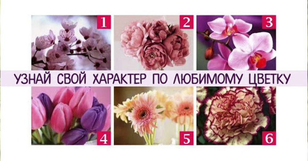 Что думают о Вас другие люди! Просто выберите цветок, который Вам больше нравится…