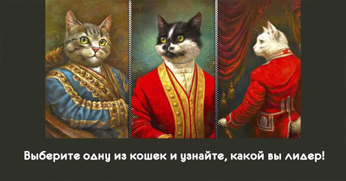 Смотрите, какие красивые кошки! Выберите одну из кошек и узнайте, какой Вы лидер!