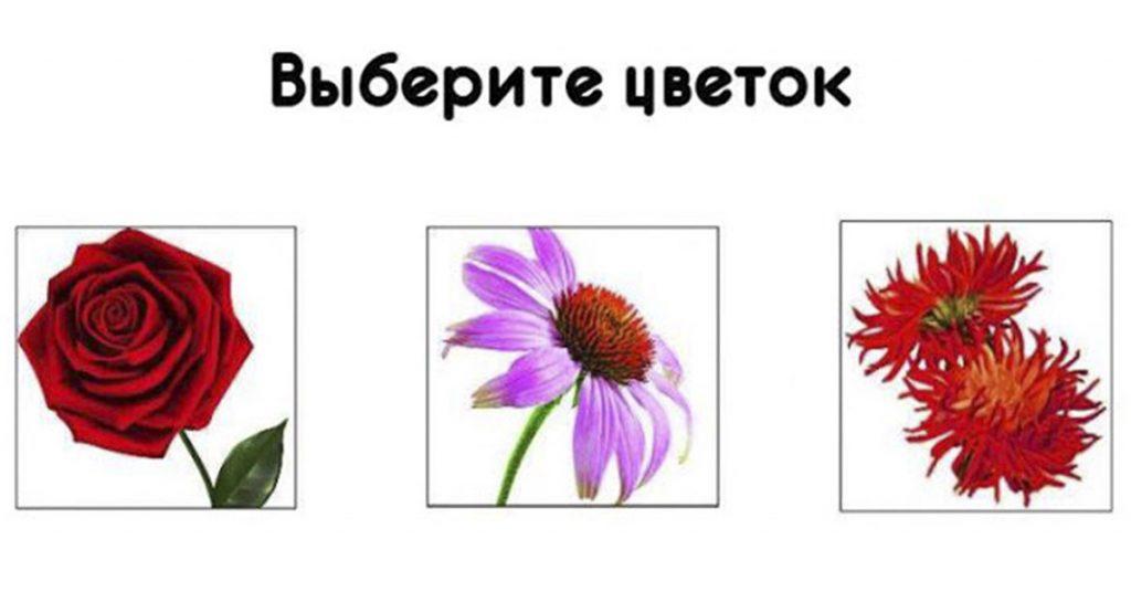 Узнайте, какая Вы женщина! Просто выбирайте цветок и удивляйтесь результату!