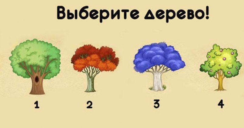 Выберите дерево и узнайте, что за 2018 год измениться в Вашей жизни! Невероятно…
