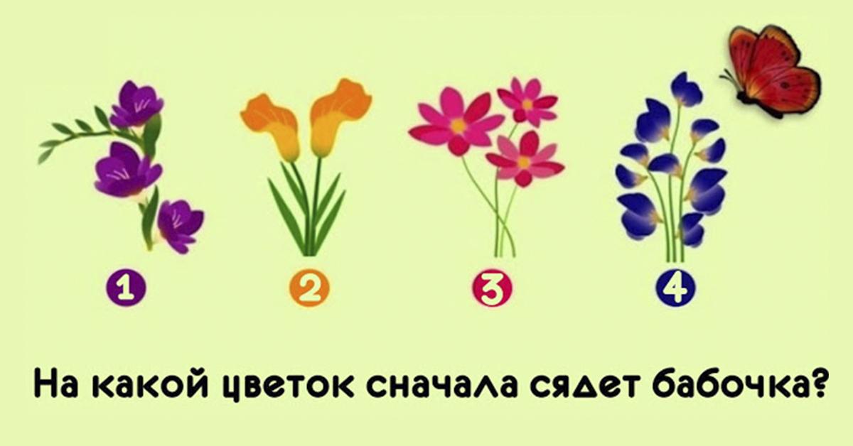 Уникальный тест на интуицию! На какой цветок сначала сядет бабочка?