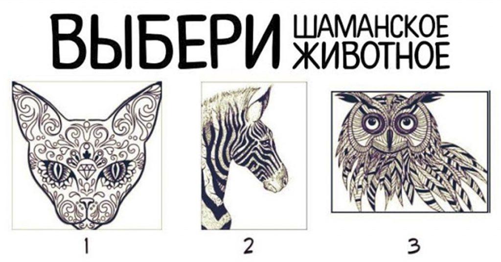 Выберите свое шаманское животное и узнайте, что за этим скрывается! Необычный…