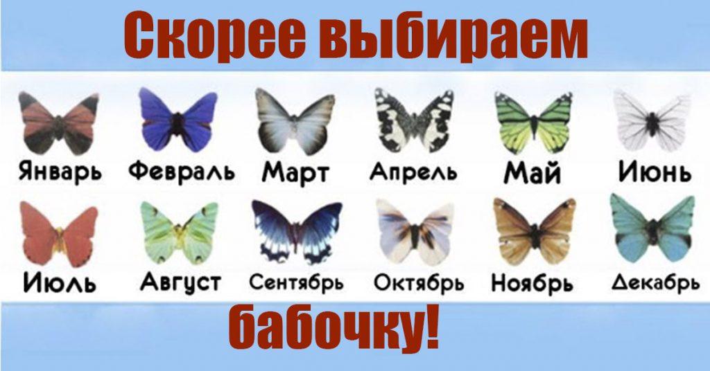 Не поверите, что может рассказать о Вас месяц рождения! Ищем свою бабочку!