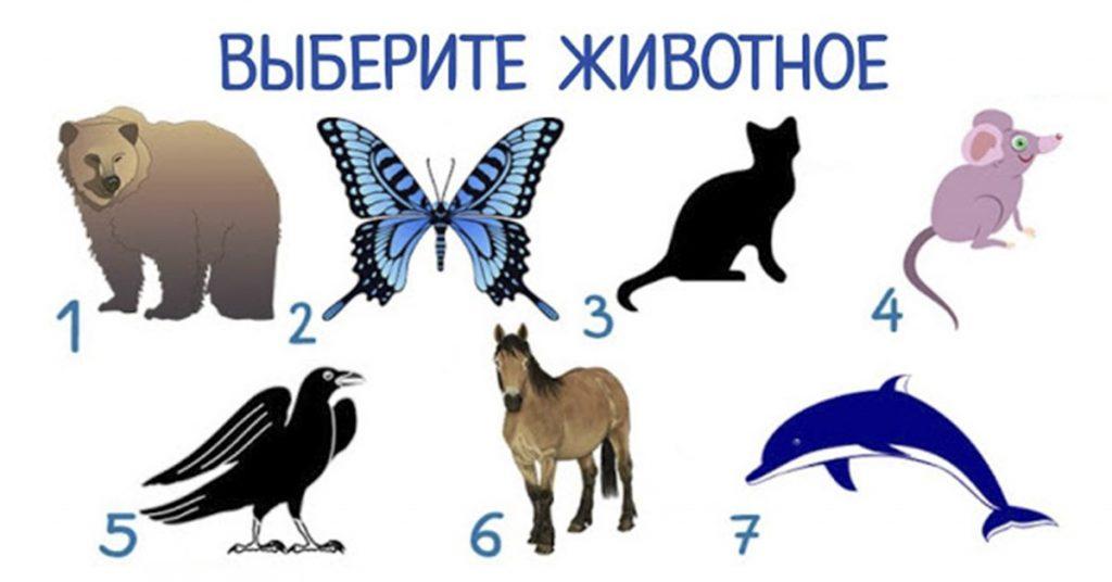 Уникальный тест! Каким животным Вы бы стали? Результат точно Вас удивит…
