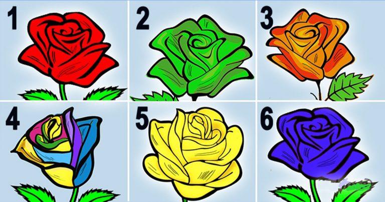 Вам стоит просто выбрать розу, и мы расскажем о Вас такое!.. Результат точно удивит Вас!